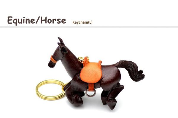 Equine/Horse